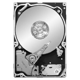 Seagate ST91000640SS