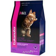Фото Eukanuba Cat Kitten Healthy Start 2 кг