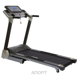 Alpha Fitness Rapid