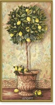 Фото Schipper Лимонное дерево